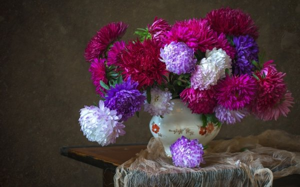 Photography Still Life Chrysanthemum Flower Vase White Flower Pink Flower Purple Flower HD Wallpaper   Background Image