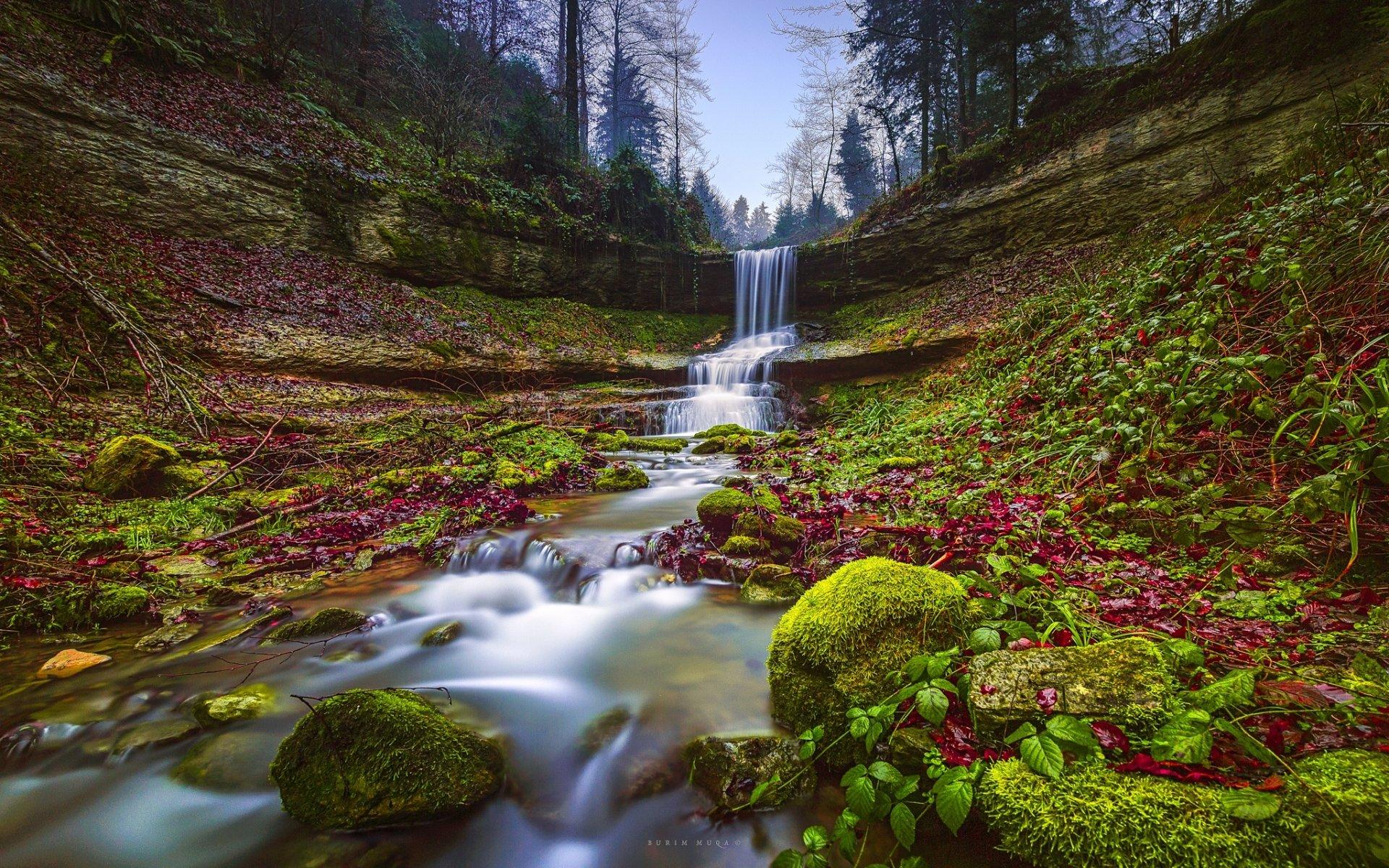 Earth - Waterfall  Nature Stream Moss Rock Wallpaper