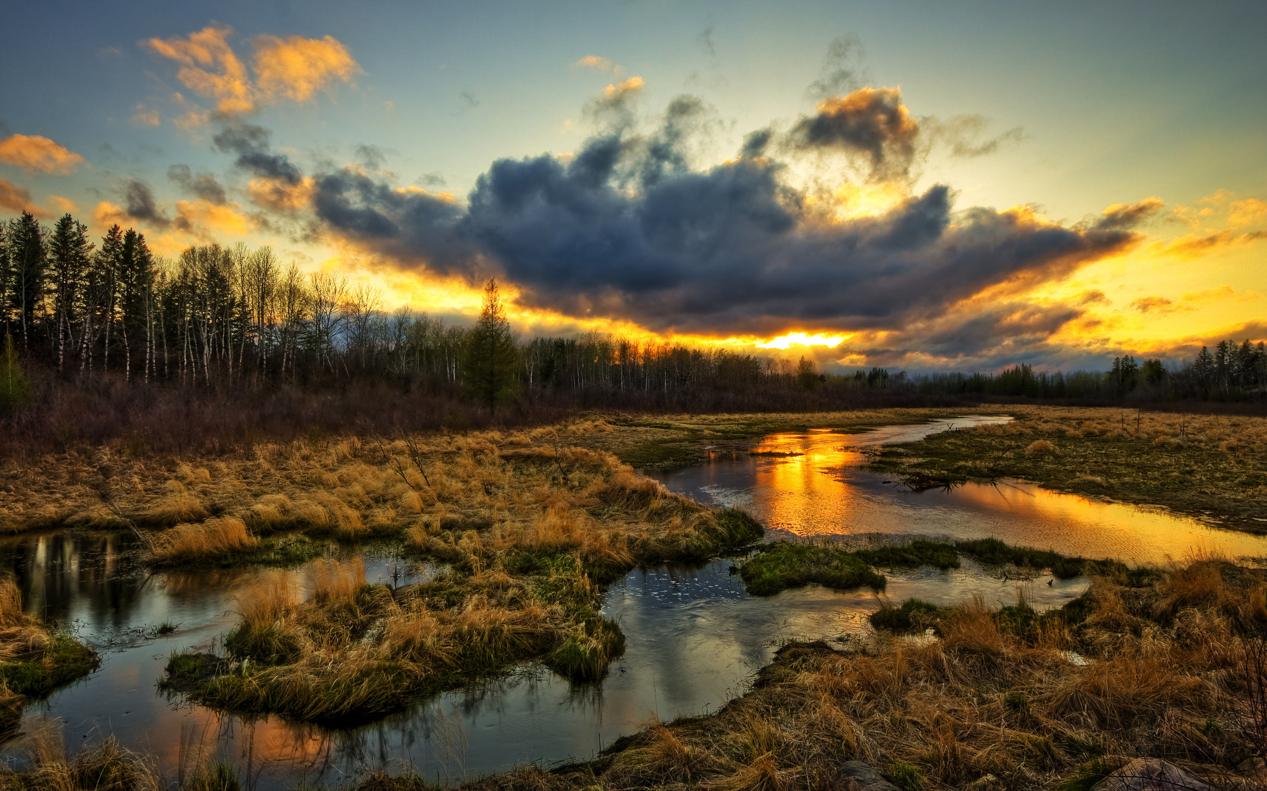 Earth - Landscape  - Photography - Swamp - Tundra - Forest - Clouds - Sunset - Skyline Wallpaper
