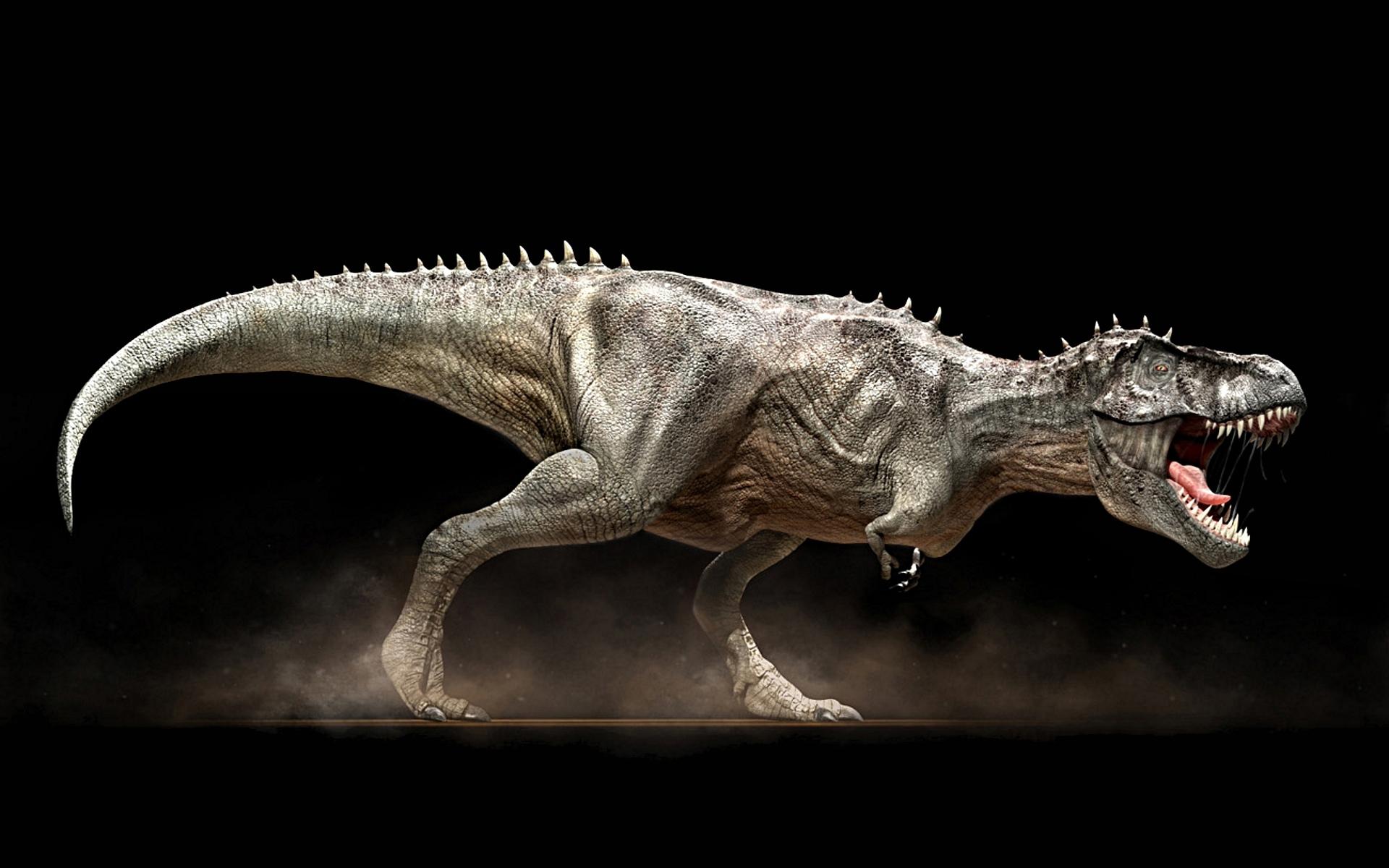 Animal Dinosaur Wallpaper