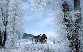 Aarde - Winter Wallpapers and Backgrounds ID : 87655