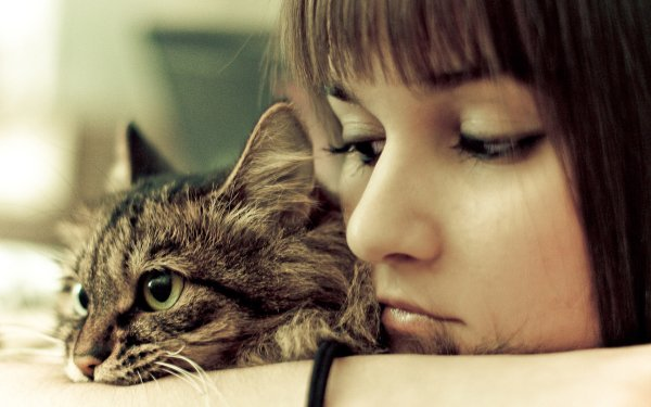 Women Pretty Photography Cat HD Wallpaper | Background Image