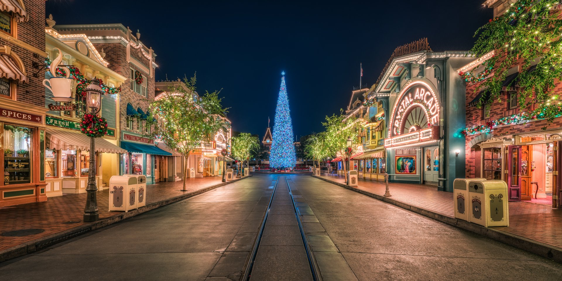 Holiday - Christmas  Holiday Disneyland California Christmas Tree Light Square Wallpaper