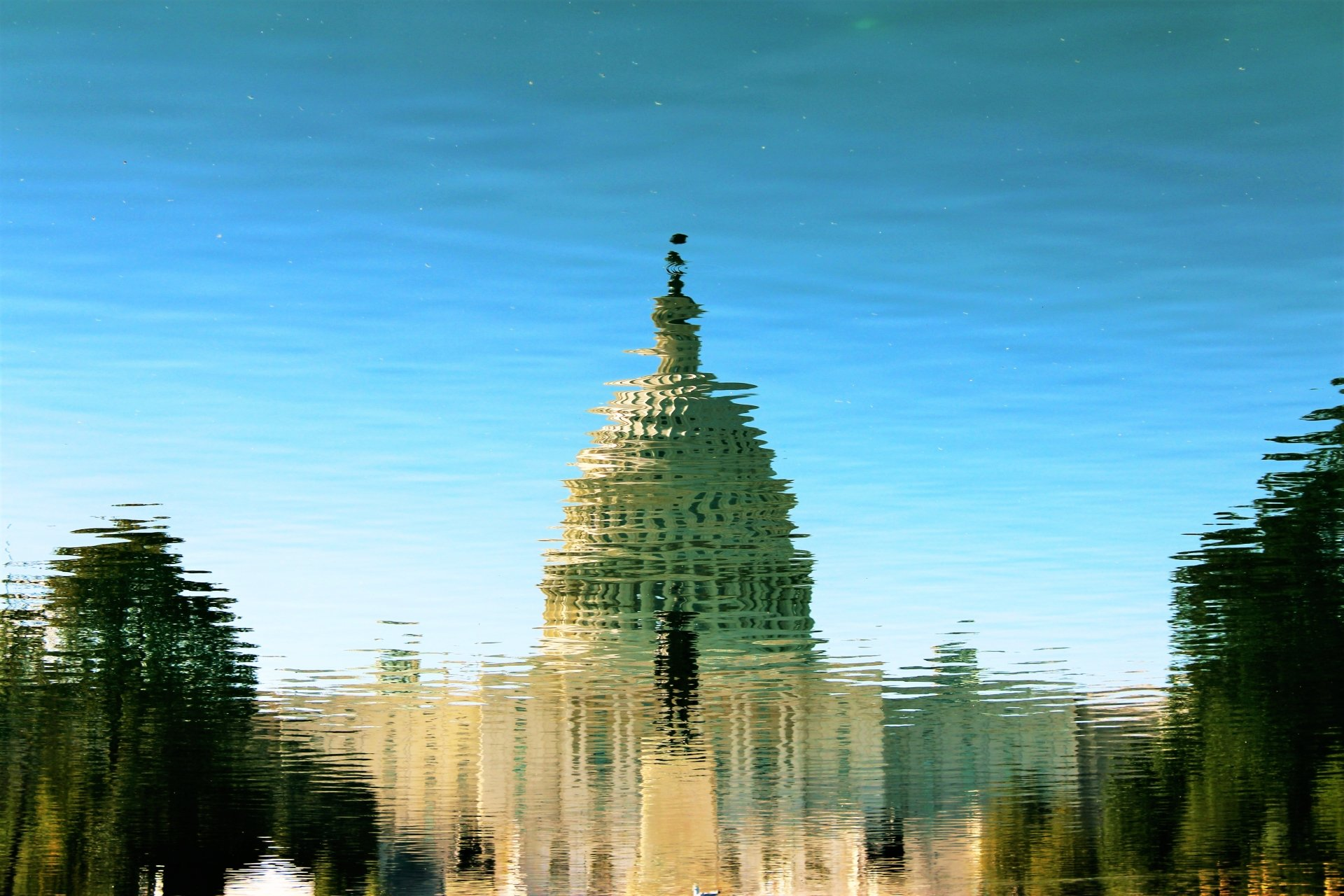 Man Made - United States Capitol  Reflection Building Capitol Building Washington Wallpaper