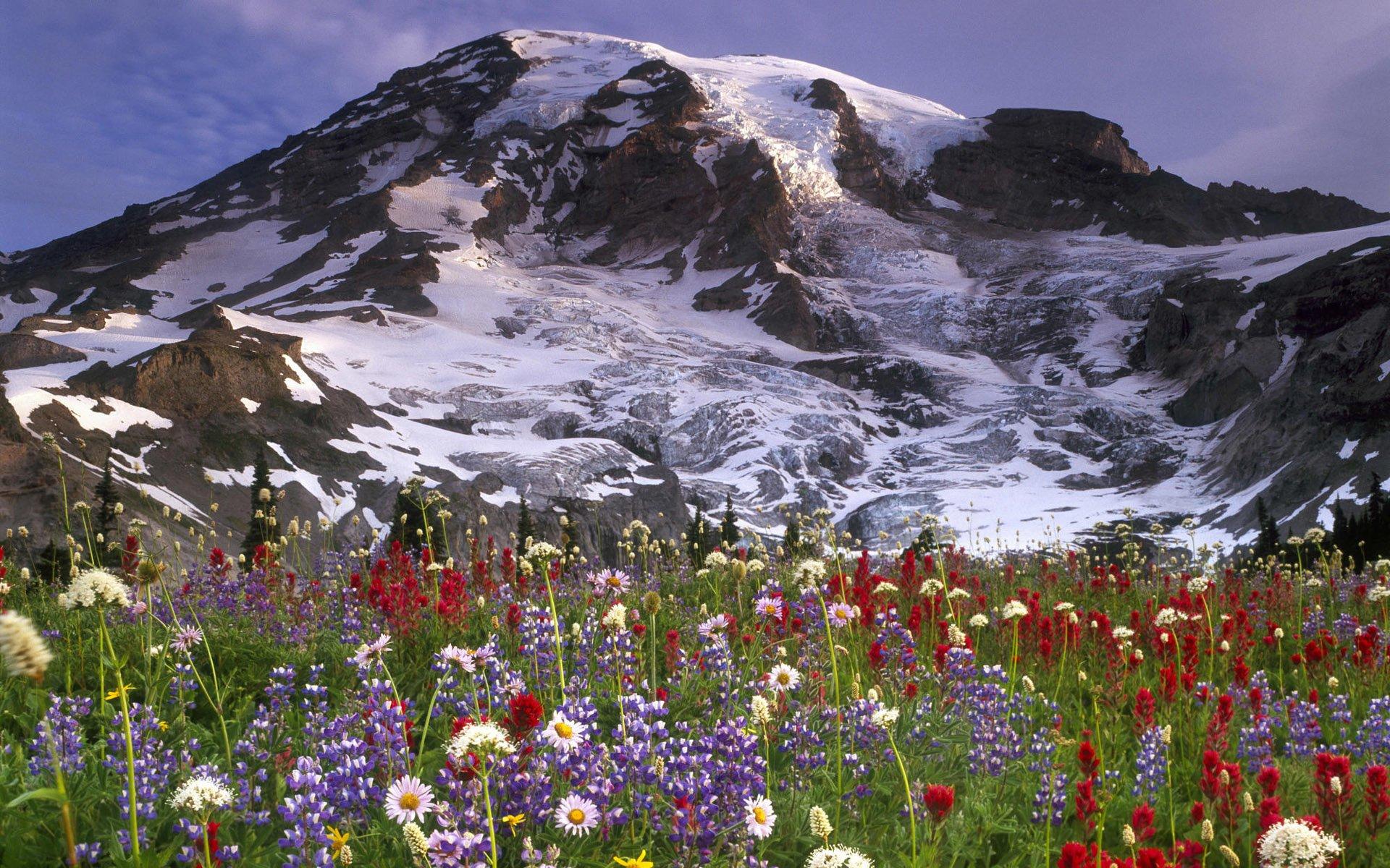 Earth - Mountain  Landscape Wallpaper