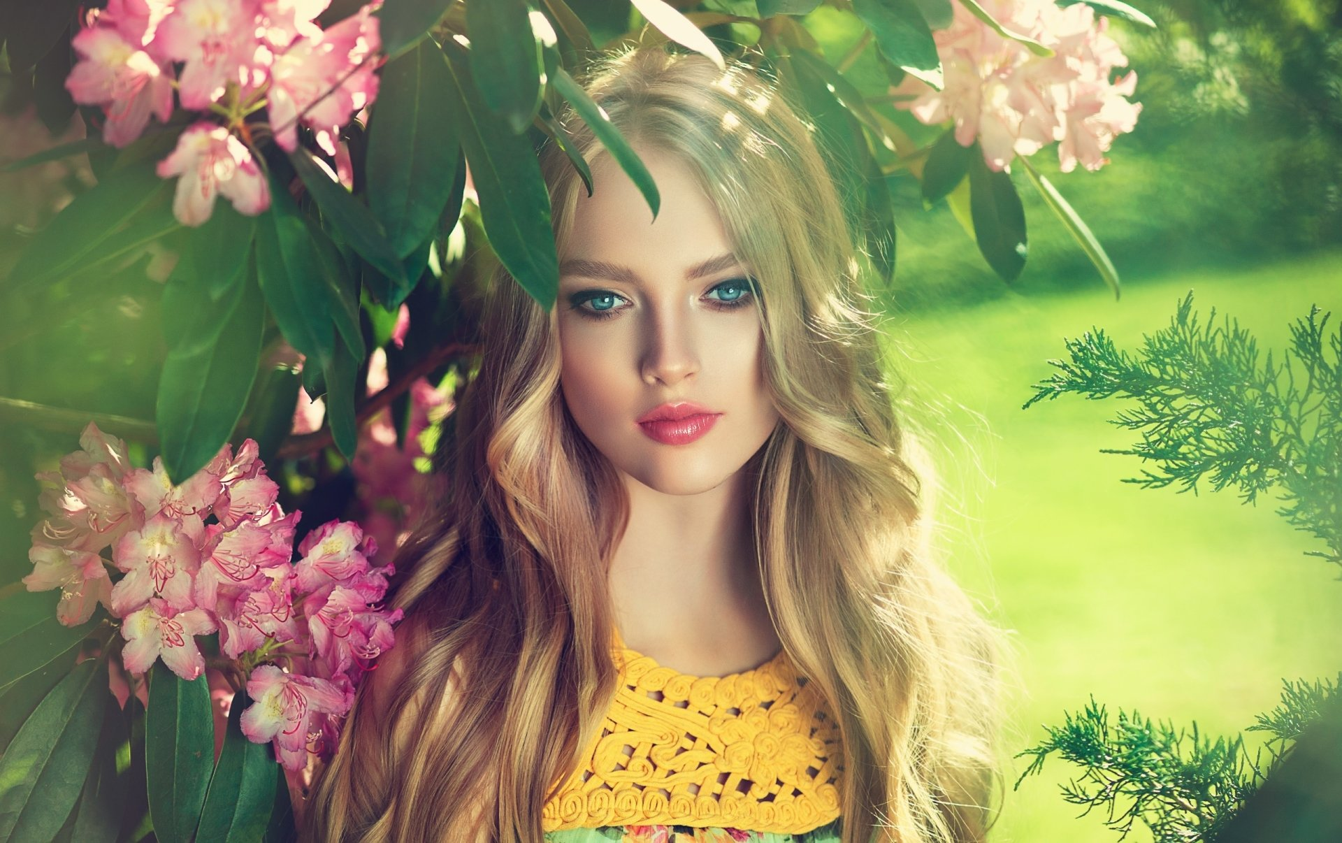 Wallpapers ID:920786