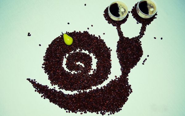 Food Coffee Cup Snail Coffee Beans HD Wallpaper   Background Image