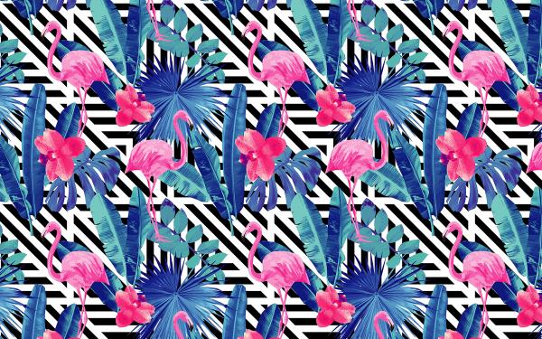 Animal Artistic Flamingo Pattern Trippy Pink HD Wallpaper | Background Image