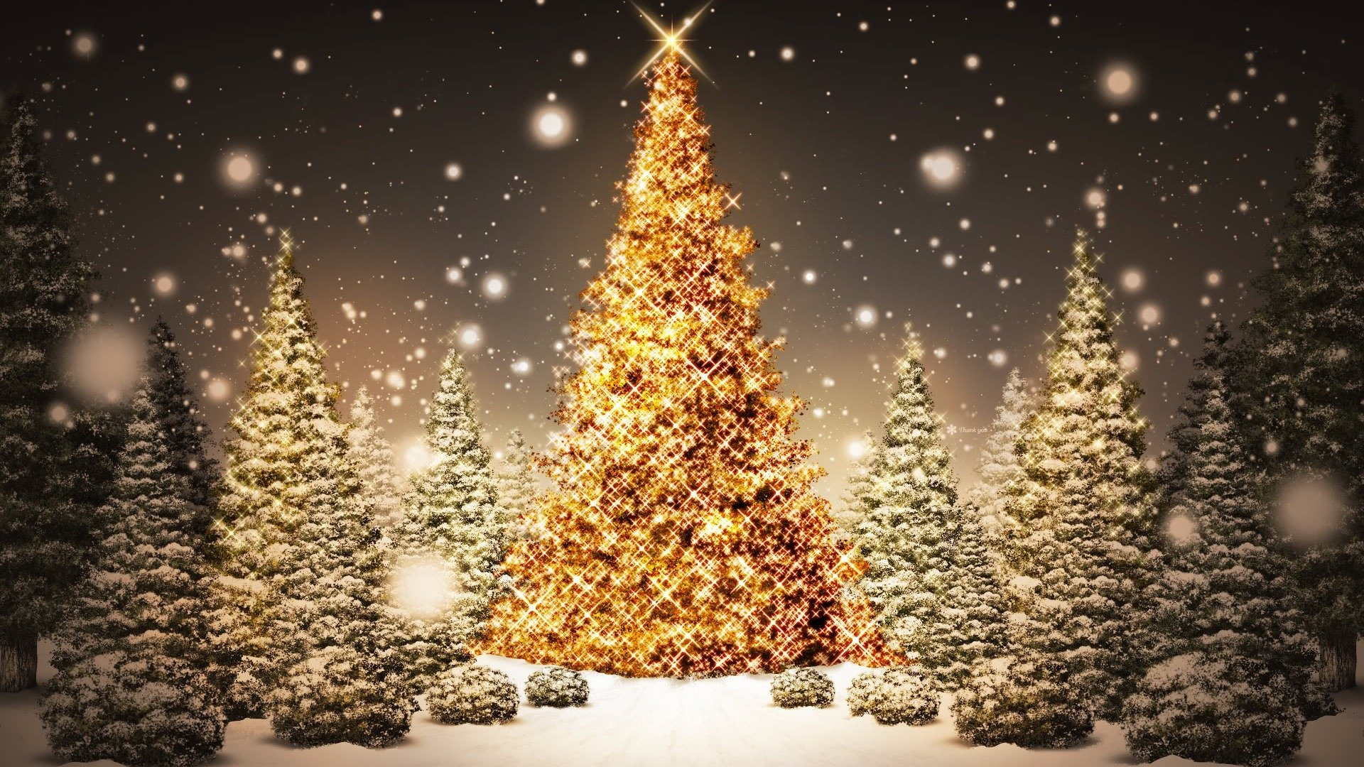 Holiday - Christmas  Christmas Lights Christmas Tree Wallpaper