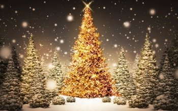 217 Christmas Lights HD Wallpapers Backgrounds Wallpaper Abyss - Christmas Lights Christmas Tree