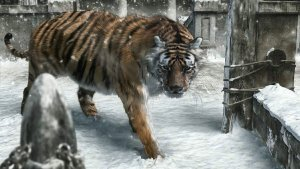 Preview CGI - Animal Art