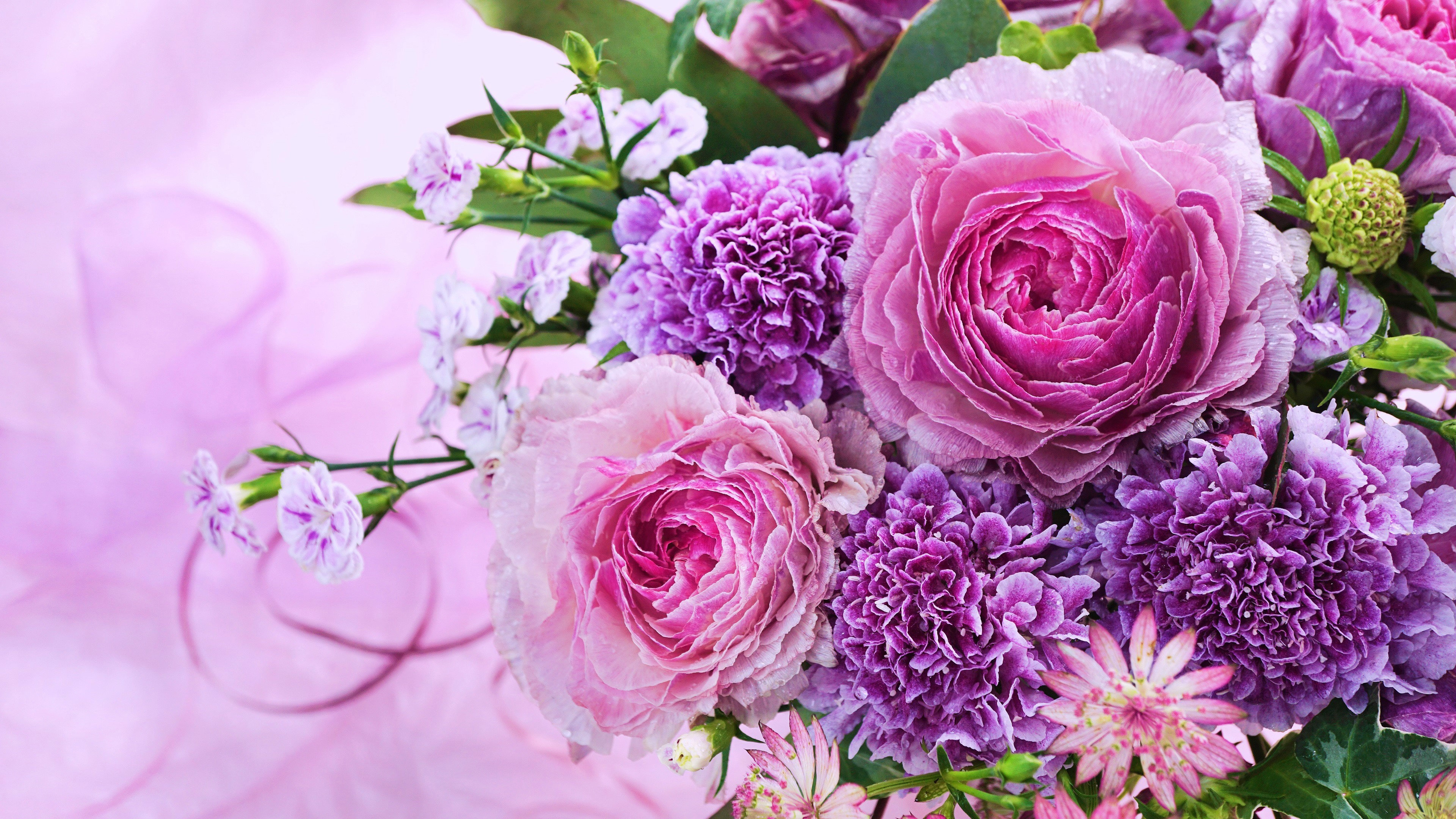 Pink And Purple Flowers 4k Ultra Hd Wallpaper Background Image