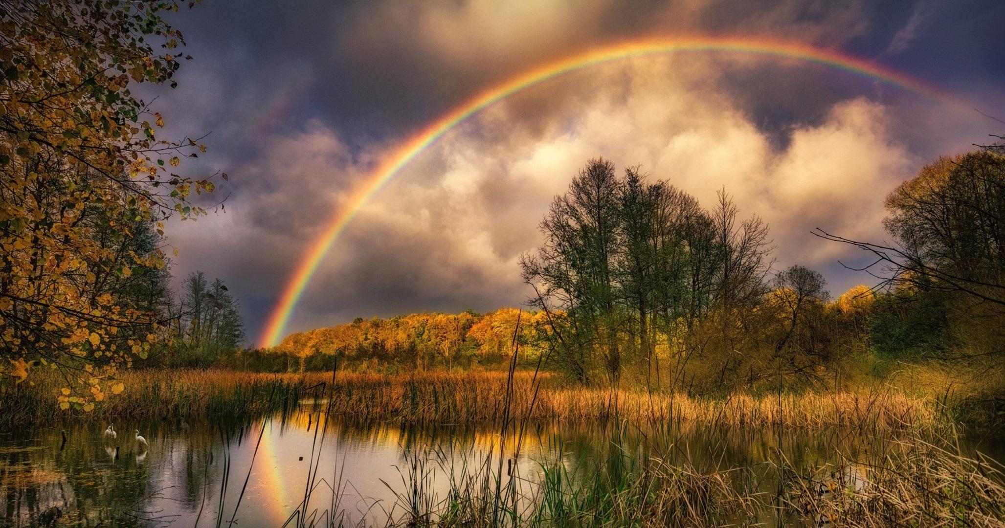 Rainbow HD Wallpaper   Background Image   2055x1080   ID ...