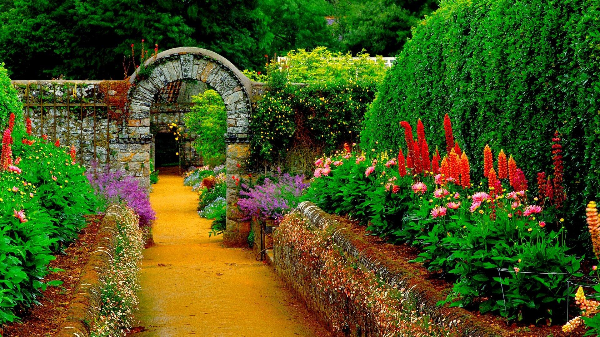 Garden Hd Wallpaper Background Image 1920x1080 Id 948550