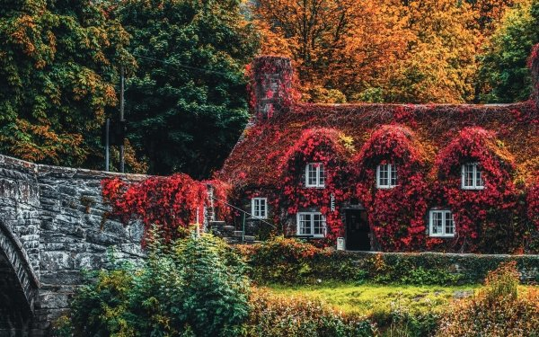 Man Made House Buildings Ivy Foliage Bridge Wales HD Wallpaper | Background Image
