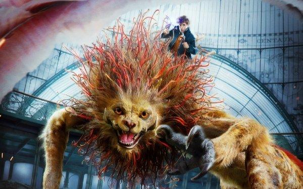 Movie Fantastic Beasts: The Crimes of Grindelwald Eddie Redmayne HD Wallpaper | Background Image