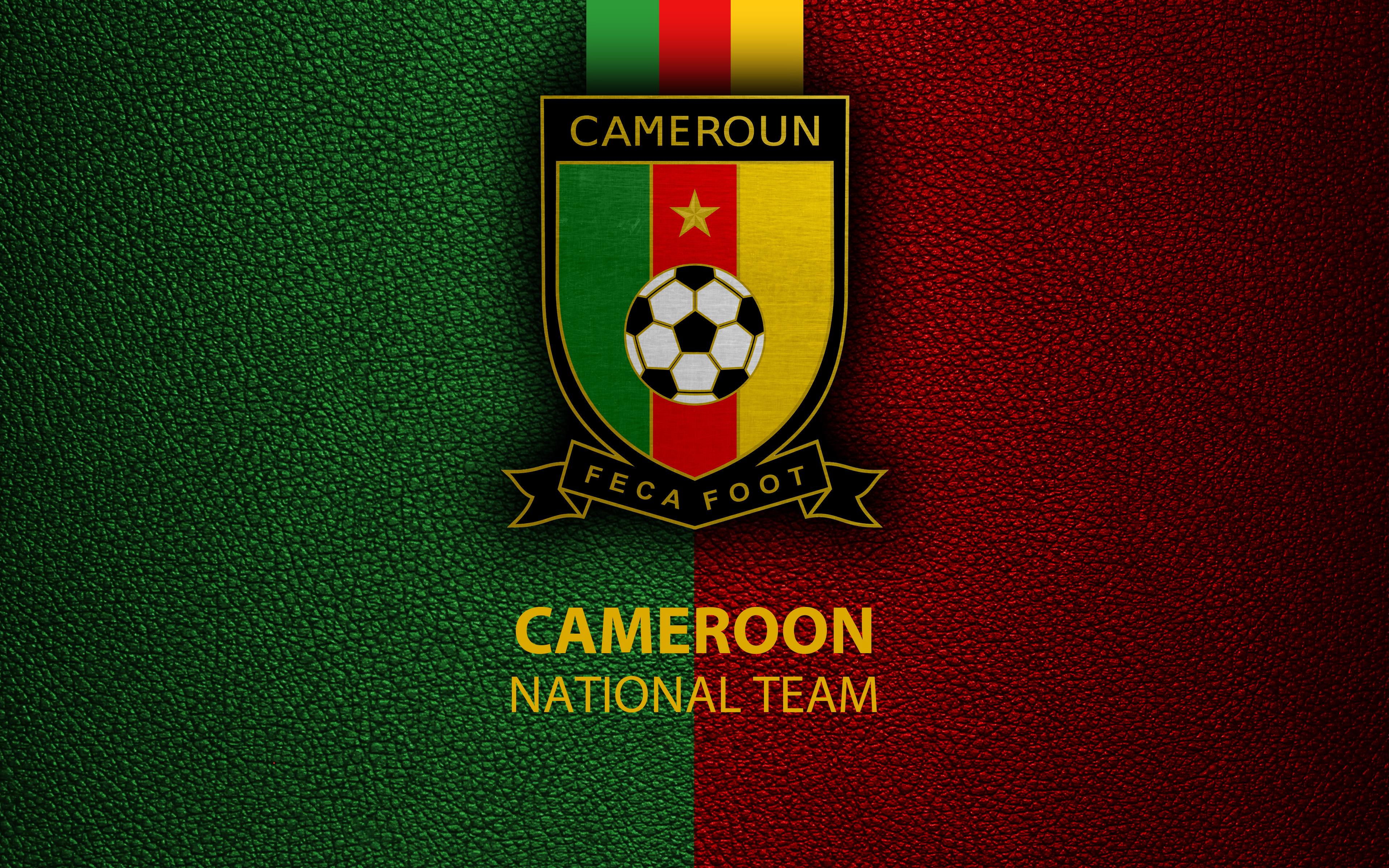 Cameroon National Football Team Teams Background
