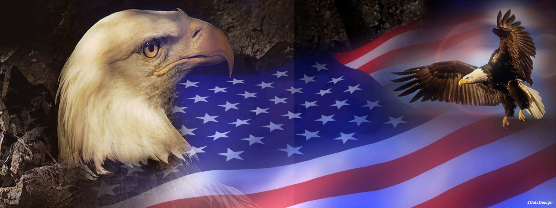 Misc - Patriotic  Eagle Bird Wallpaper