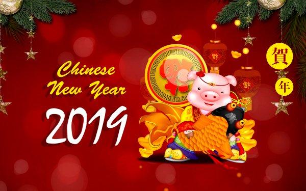 Vacances Nouvel An Chinois Cochon Fond d'écran HD | Arrière-Plan