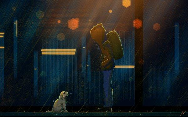 Artistic Boy Rain Dog Sad HD Wallpaper | Background Image