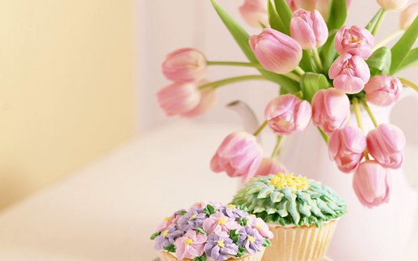 Photography Still Life Cake Tulip HD Wallpaper | Background Image
