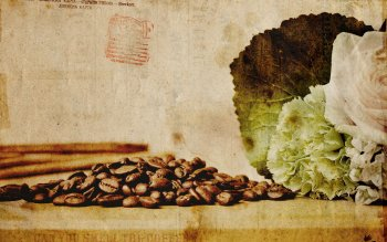 Food - Coffee Wallpapers and Backgrounds ID : 9969